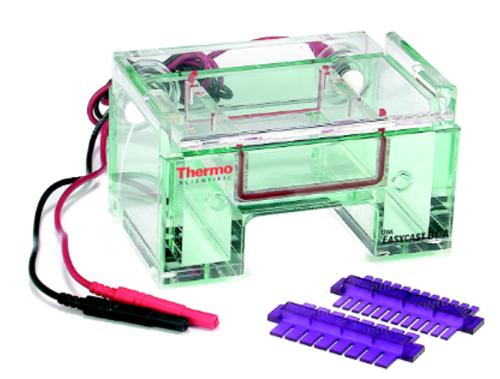 Yatay ve Dikey Jel Elektroforez Sistemleri